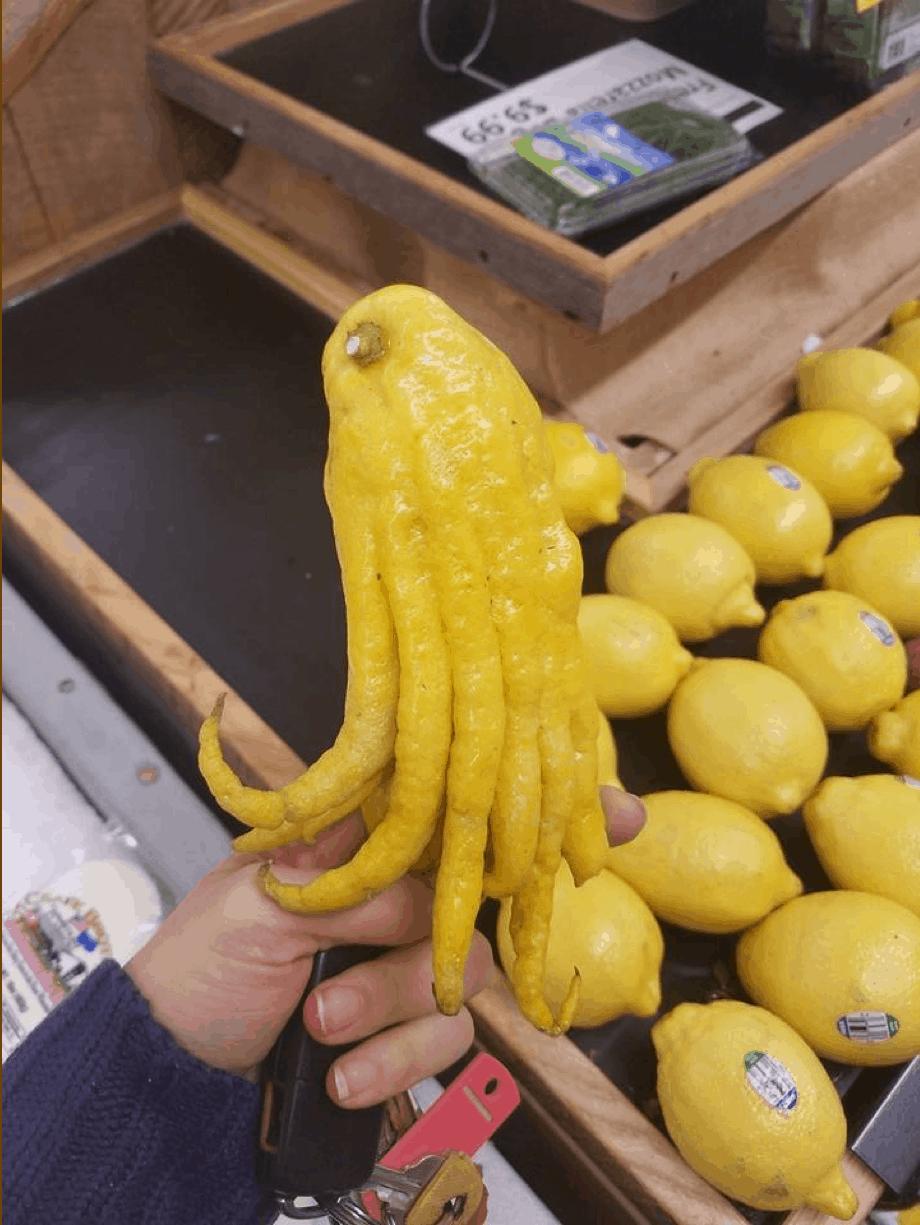 Cuando la vida te da limones., Al mal tiempo … ¿Buena cara? o por qué, si la vida te da limones, puede que no los uses para hacer limonada.